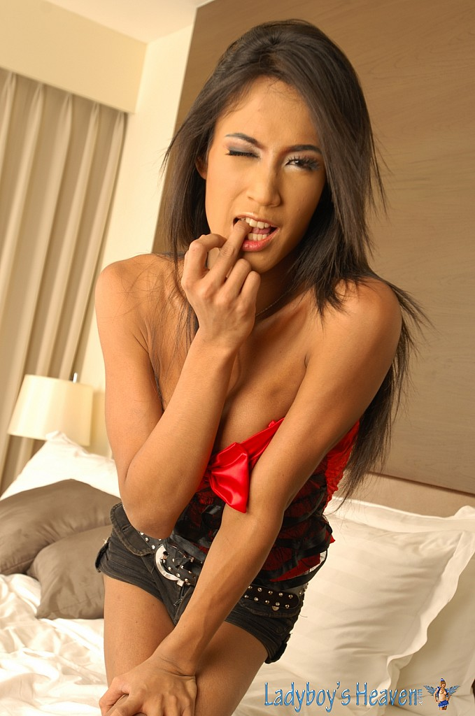 Ladyboys Amp Shemales Daily Pictures And Tube Clips